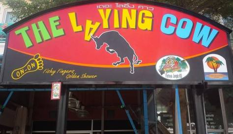 lyingcow